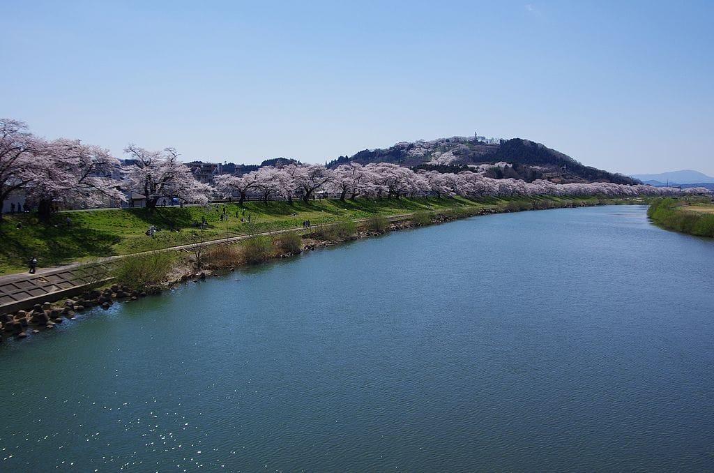 櫻花季才正要開始呢!東北六縣最佳賞櫻地點