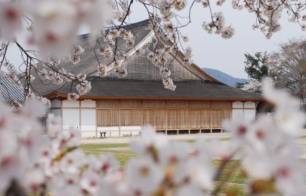 【慢遊篠山】和服、城跡、古民家 400年城下町散策