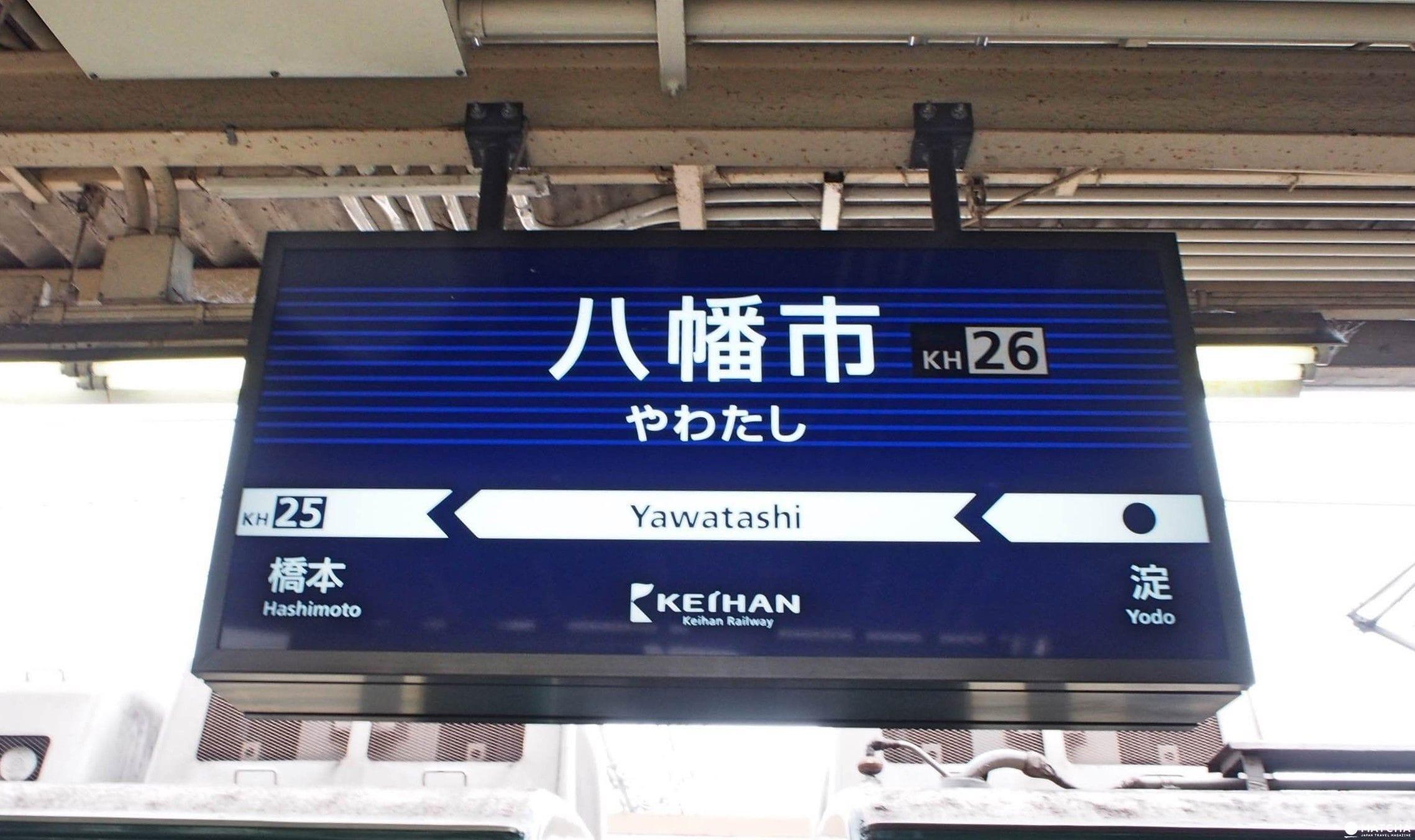 京都八幡市 賞櫻 告白的最佳地點淀川河川公園背割堤