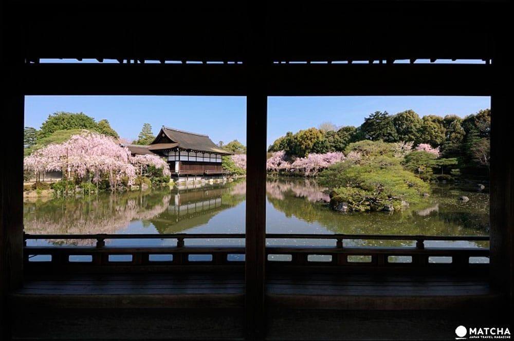 【京都】旺季時最快的移動方式!京都市地下鐵景點介紹——東西線賞櫻篇