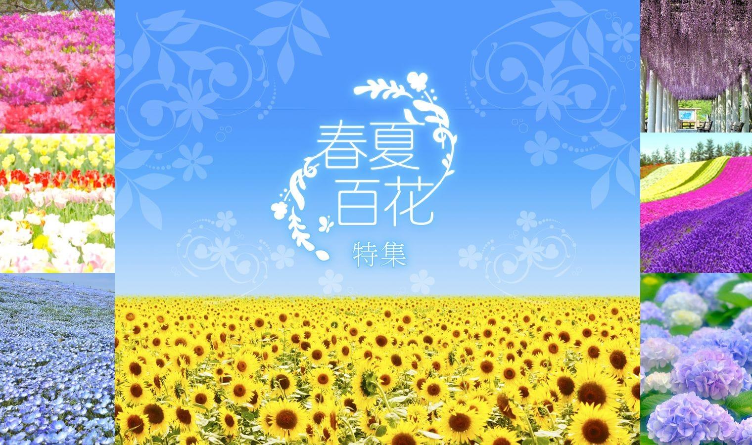 日本春夏花季