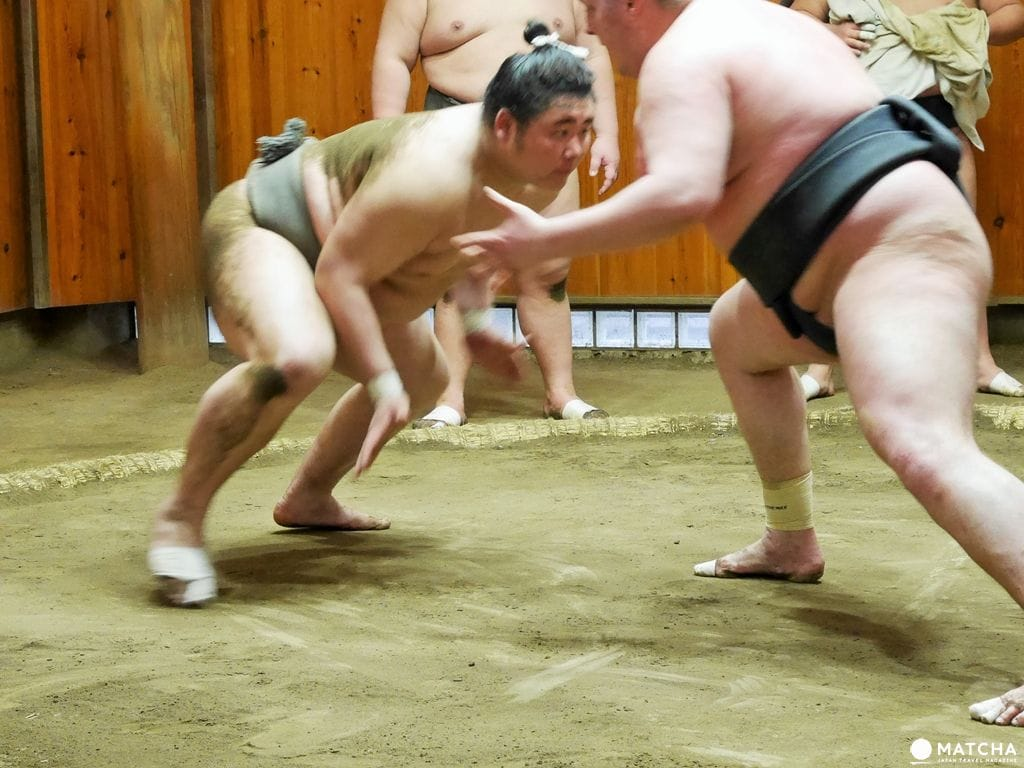 『東京新體驗』近距離感受肉貼肉的激烈碰撞,相撲晨練體驗