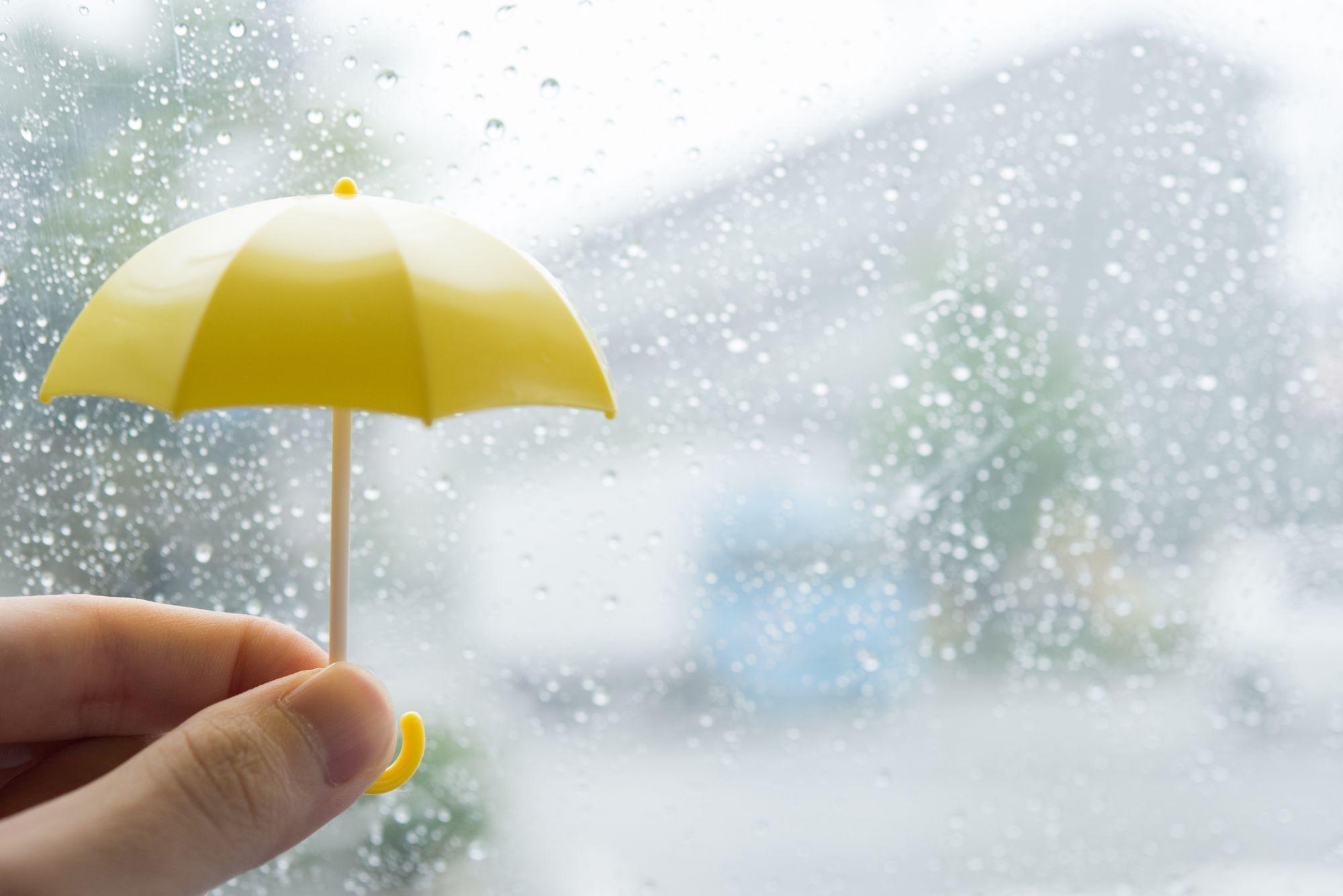 Japan's rainy season