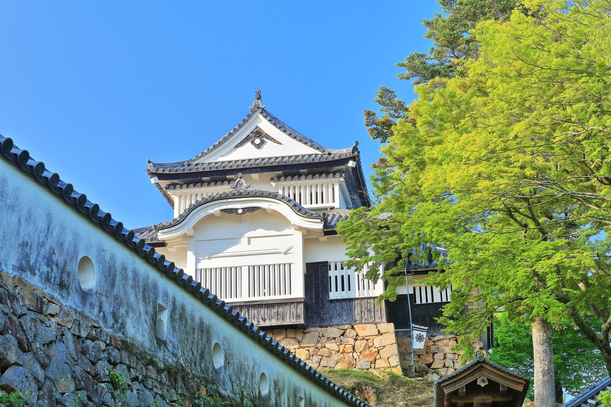 Matsuyama Castle, Hot Spring Onsen, And Ocean Views! A Guide To Ehime Prefecture