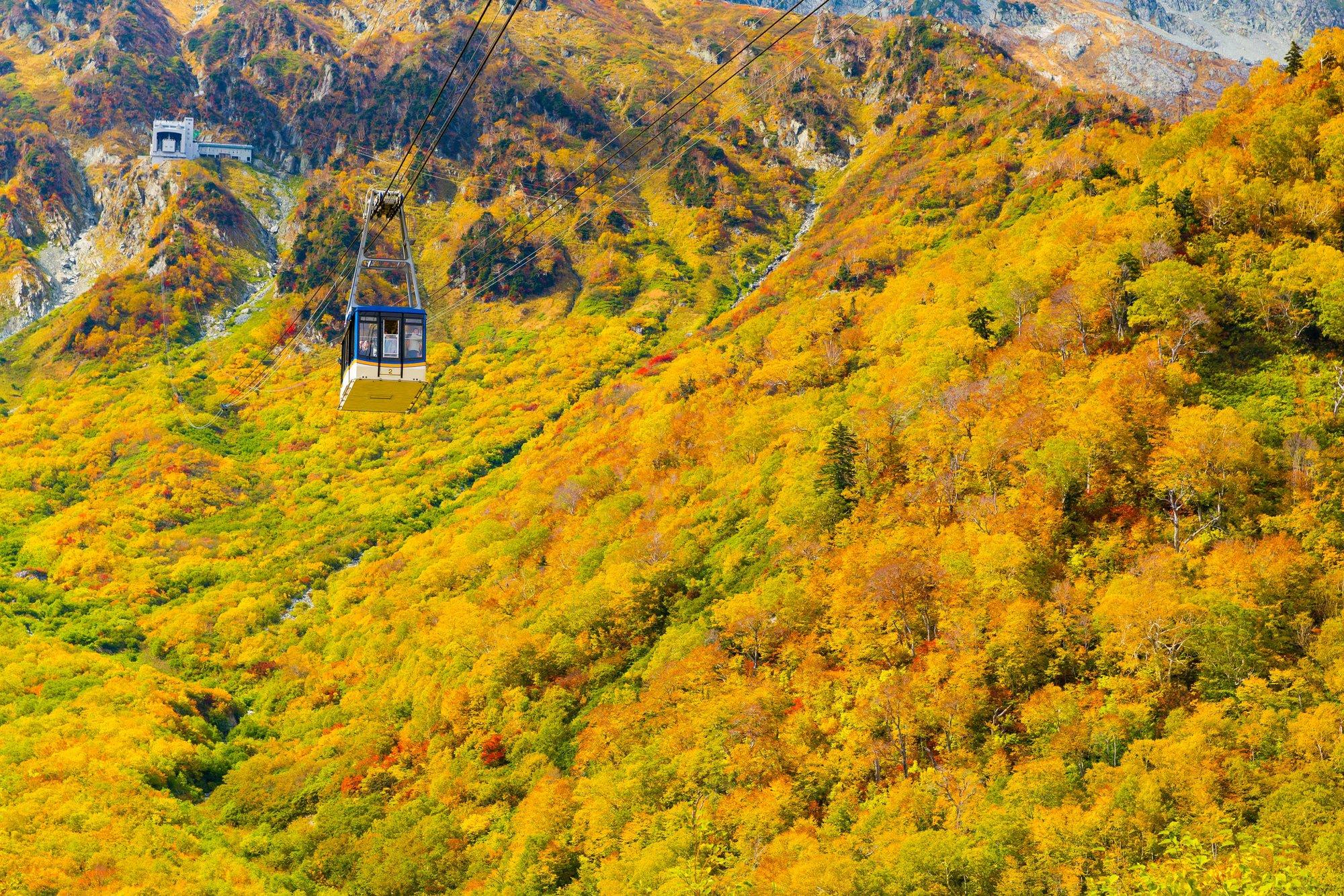Mt.Daikanbo