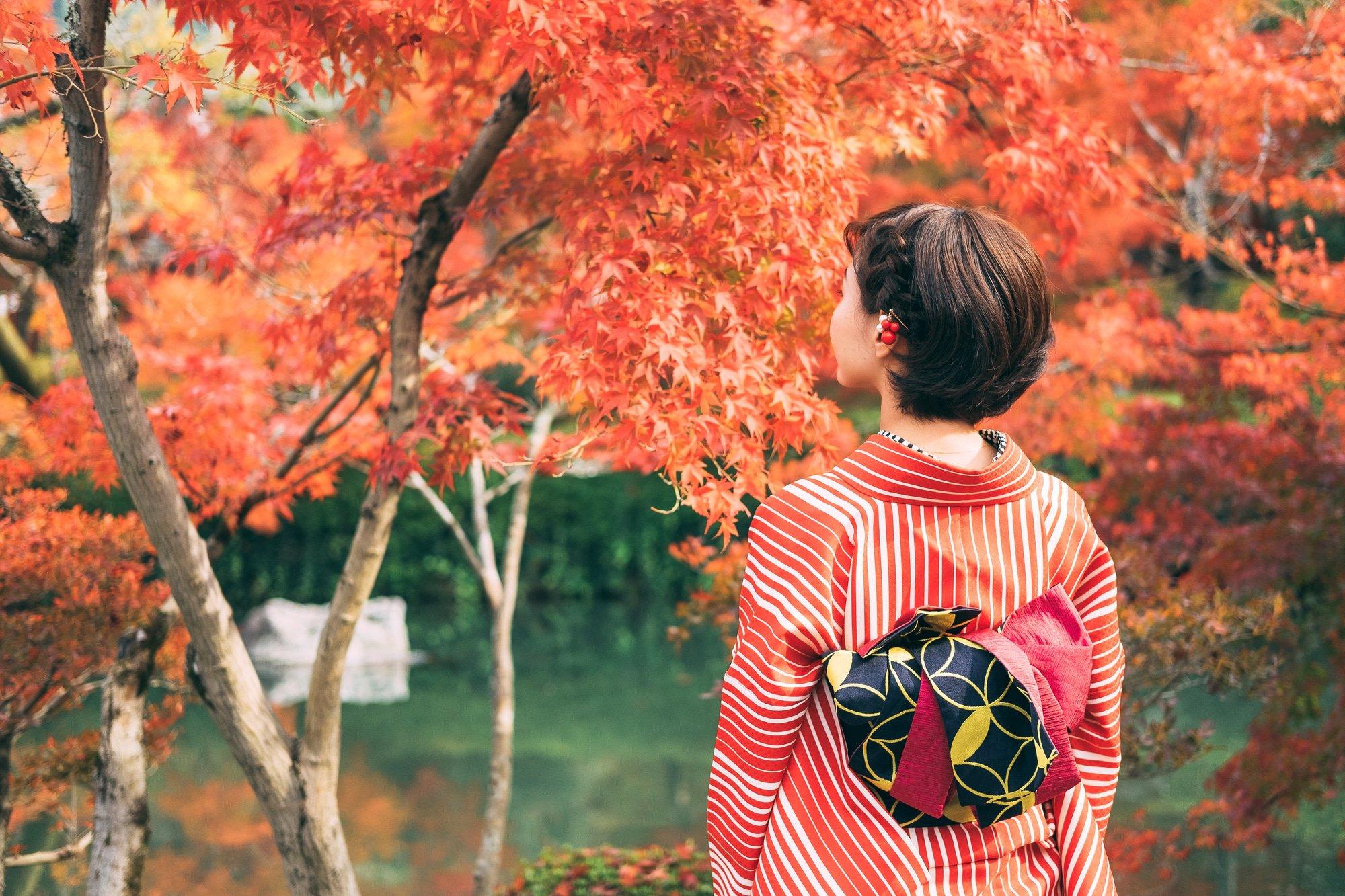 Momijigari Admiring Autumn Leaves In