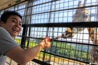 온천만 있는게 아니다! 벳푸 관광 추천 스폿을 소개합니다!
