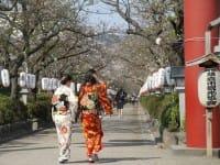 鎌倉完全ガイド!観光スポット20選、カフェ、グルメ、イベント、移動手段まで