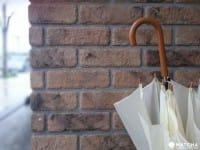 일본의 우기・츠유(梅雨/장마)의 기본 정보와 여행자를 위한 츠유를 보내는 방법
