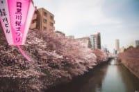 說什麼也要去一次!東京前五名賞櫻景點:目黑川