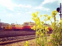 【รอบนอกโตเกียว】นั่งรถไฟสไตล์ย้อนยุคเที่ยวรอบจ.ชิบะ!