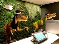 服務生不是人!?東京住宿新選擇「奇怪的飯店(変なホテル) 」迪士尼樂園旁開幕!