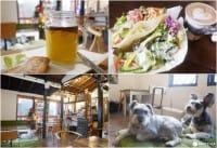 『早稻田』再也不用擔心五葷與蛋奶,旅日素食者的綠洲「cafe VG」