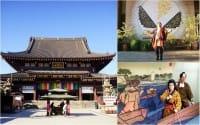 參加「鐵男根祭」時,也別忘了「前日祭」和走訪川崎市觀光景點唷!