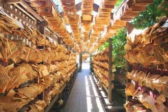 【埼玉県川越市】縁結びの神社「川越氷川神社」ですべき8つのこと