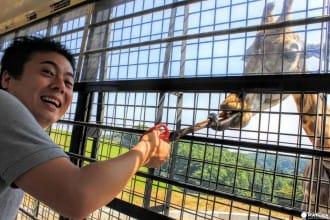 Tidak Hanya Onsen, Berikut MATCHA Perkenalkan Spot Wisata di Kota Beppu!