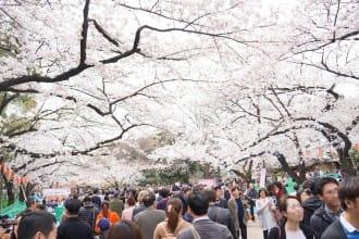 上野公園完全指南,園內14項設施與看點大解說