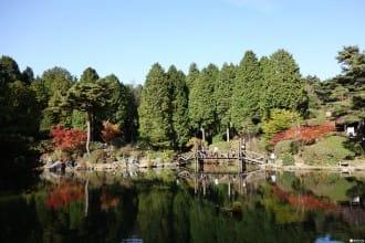 <div class='captionBox title'>【神戶】不分晝夜賞楓景點:六甲山植物園&六甲山花園</div>