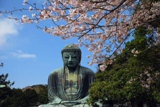Kamakura's Best 10 Cherry Blossom Viewing Spots