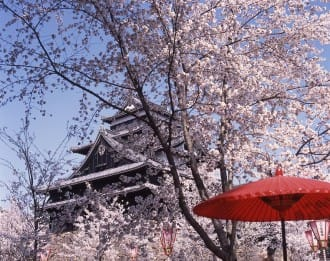 【島根縣】不管是櫻花還是雪!能夠欣賞四季美景的松江城