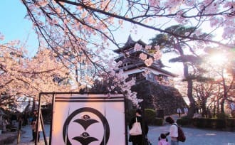 Castles And Japanese Gardens! Top 5 Cherry Blossom Spots In Hokuriku