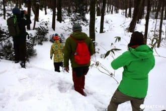 세계 자연 유산의 아오모리현 「시라카미 산지 ・ 주니코」에서 겨울 한정 스노우 하이킹 체험하기