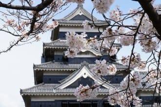 【長野】國寶「松本城」賞櫻漫步城下町