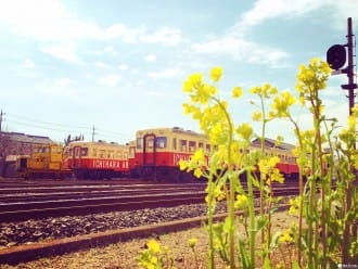 『东京近郊』跳上复古列车巡游千叶吧!小凑,夷隅,铫子铁道行程