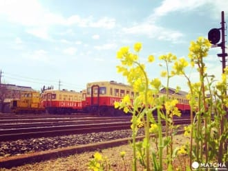 Enjoy Chiba's Rural Scenery Aboard A Vintage Train!
