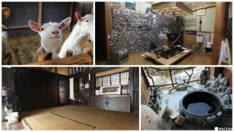 Rural Life Untouched In Japan: Farm Stays In Tokushima