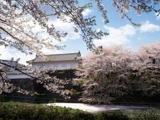 【東北山形】享受滿城千櫻的「霞城公園」