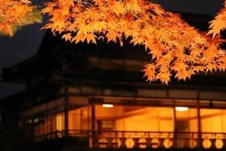 <div class='captionBox title'>庭園與建築的美麗結合,來到新潟縣「舊齋藤家別邸」享受日本的四季美景</div>
