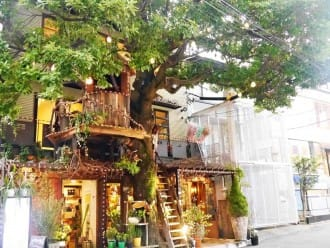 <div class='captionBox title'>10 Unique Cafes In Tokyo - Where A Coffee Break Becomes An Experience!</div>
