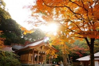 Fukuoka - 8 Spots To Enjoy Fall Foliage In Northern Kyushu In 2018