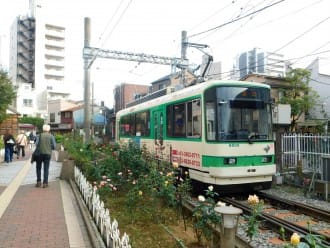 <div class='captionBox title'>Beautiful Fall Roses - See Retro Tokyo On The Toden Arakawa Line!</div>