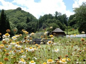 <div class='captionBox title'>Minamiaizu - The Beauty And Serenity Of A Secluded Farming Village</div>