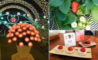Visit Tochigi To Enjoy Delicious Strawberries And Gorgeous Flowers!
