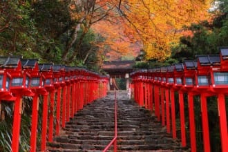 Japan Autumn Leaves Calendar 2020 - Seasonal Forecast And Famous Spots!