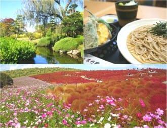 <div class='captionBox title'>View Stunning Gardens In Ibaraki! A Trip Using The JR TOKYO Wide Pass</div>