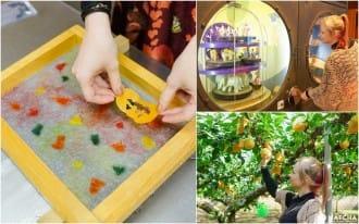 <div class='captionBox title'>鳥取市の工芸と果物を満喫!バスで行けるオススメスポット7選</div>