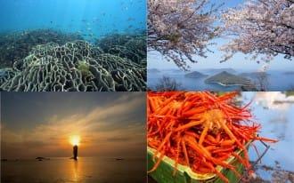 <div class='captionBox title'>在尋覓日本島國的自然美景嗎?,造訪遼闊海景的「國立公園」準沒錯!</div>
