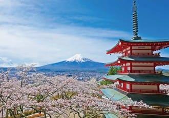 <div class='captionBox title'>期間限定的絕景!盡享富士山、櫻花、山梨美食的「新倉山淺間公園櫻祭」</div>
