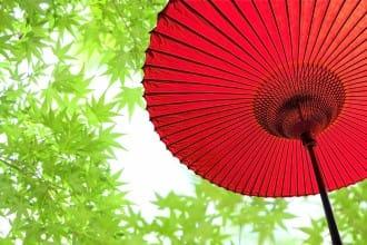 Tsuyu (Rainy Season) - Japanese Encyclopedia | MATCHA