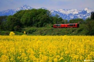 <div class='captionBox title'>光搭車都是享受! 新潟景觀列車「雪月花」 享盡美食美景的奢華三小時</div>