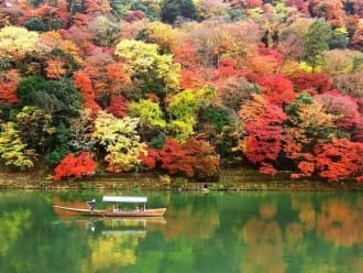 日本 賞楓