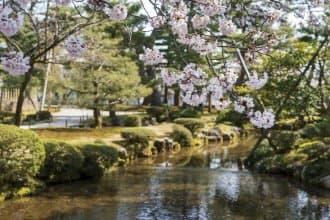 Castles And Japanese Gardens! Top 5 Cherry Blossom Spots In Hokuriku