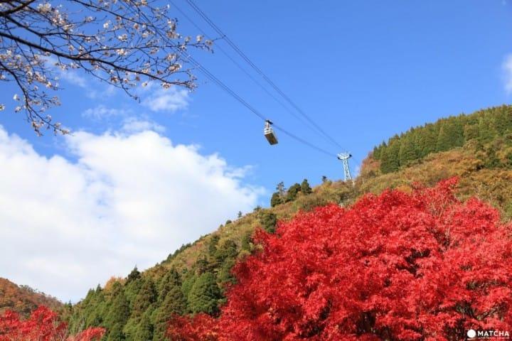 【大分县】世界绝景之别府缆车,来趟空中散步吧!