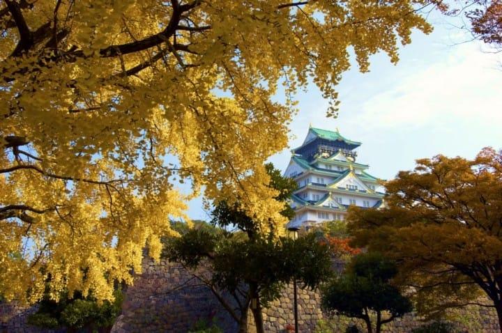 【2018】Top 10 địa điểm ngắm lá đỏ ở Osaka ~ Công viên Mino, Lâu đài Osaka, Công viên Daisen và những nơi khác ~