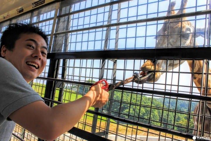 Không chỉ có suối nước nóng! Giới thiệu 1 số địa điểm thăm quan Beppu!