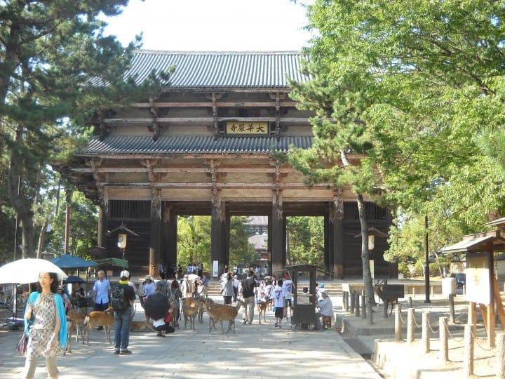 奈良县旅游观光指南。交通、景点到购物伴手礼,抹茶一次告诉你